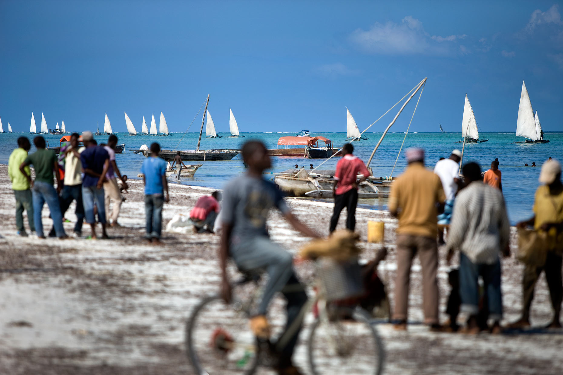 Sailing boats bring catch to Matemwe beach